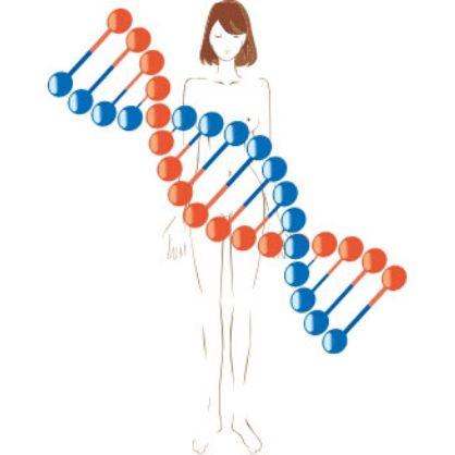 自分の体内環境、本当にわかっていますか? 腸内フローラ解析
